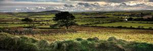 'Cornwall' - Image by Robert Moore